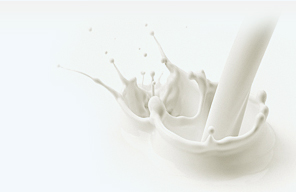 Milk Products in India